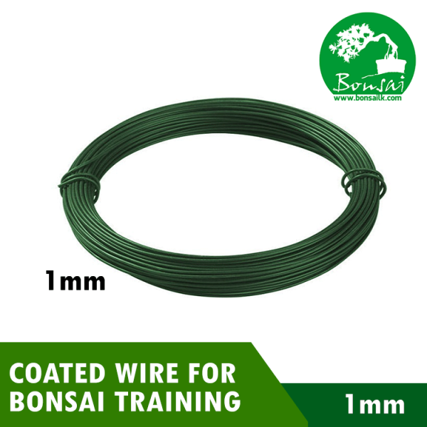 Bonsai Training PVC Coated Wire 1mm Green Color (500g)